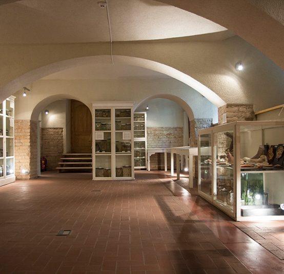 Ekskursija tiešsaistē Rīgas Stradiņa universitātes Anatomijas muzejā